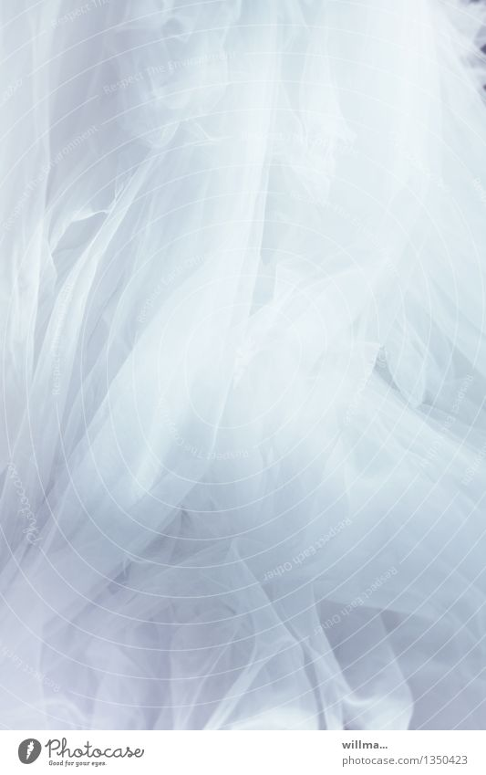 White Feasts & Celebrations Romance Wedding Delicate Cloth Ghosts & Spectres  Luxury Festive Folds Gorgeous Wedding dress Tulle Fragrant Ball gown