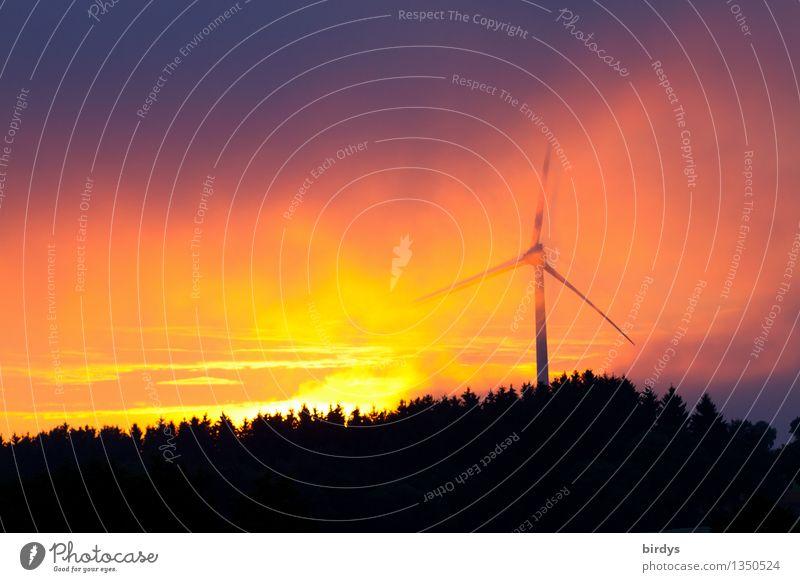 solar wind Energy industry Renewable energy Wind energy plant Nature Sky Clouds Storm clouds Sunrise Sunset Sunlight Fog Forest Illuminate Esthetic Exceptional