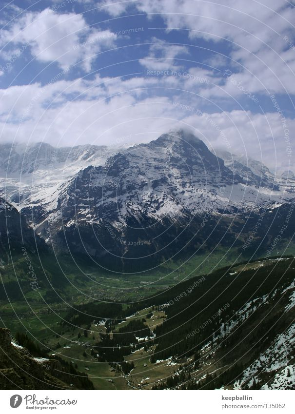 Eiger Grindelwald Switzerland Forest Mountain Sky Snow Ice Valley