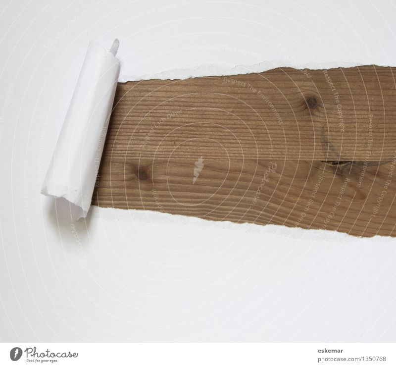 White Wood Brown Paper Broken Mysterious Surprise Piece of paper Stationery Torn Rolled