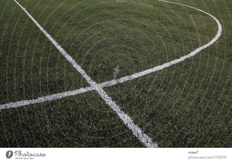 White Colour Meadow Sports Grass Earth Line Park Back Soccer Places New Floor covering Good Round Clean
