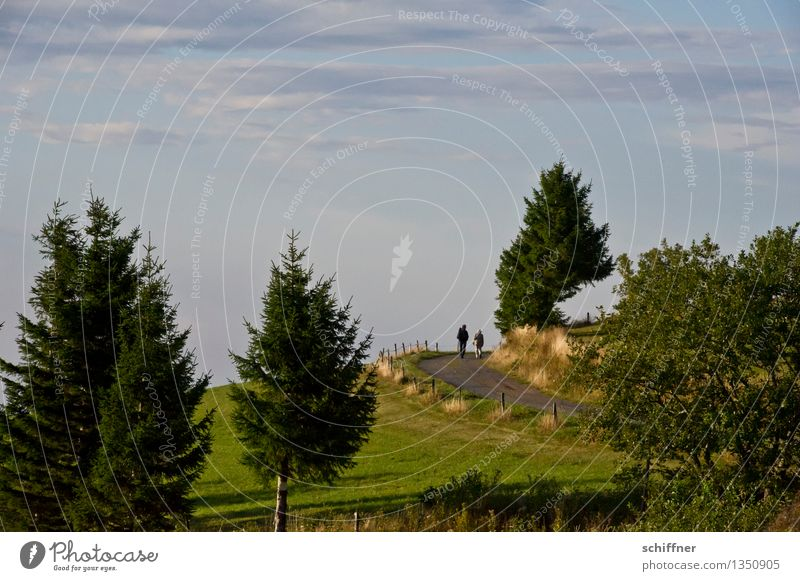 Human being Sky Nature Green Tree Landscape Clouds Environment Meadow Lanes & trails Couple Friendship Bushes Hill Pasture Fir tree