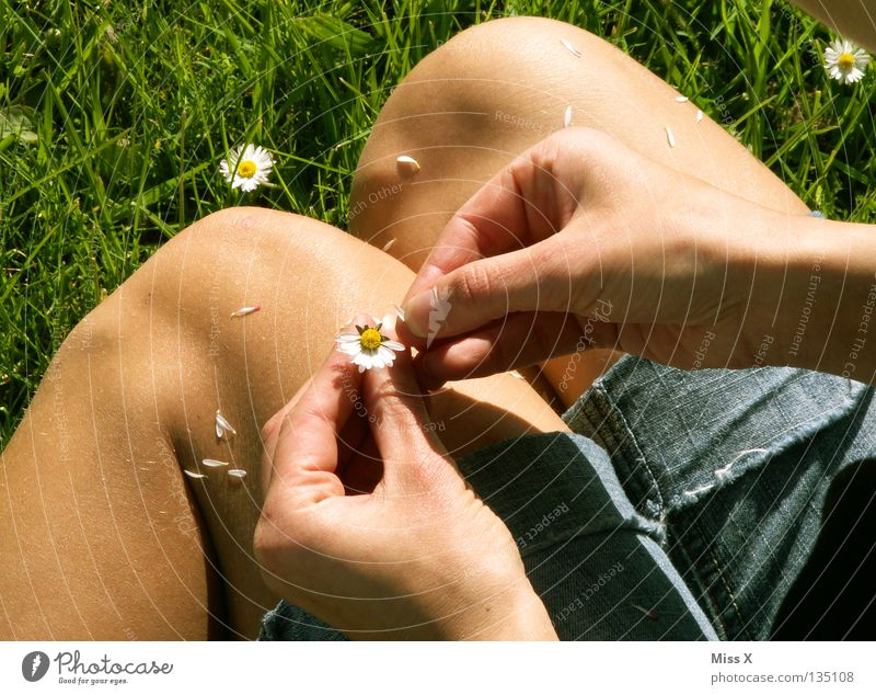 Woman Green Hand Flower Adults Meadow Grass Blossom Sadness Think Legs Dream Wait Fingers Longing Infatuation