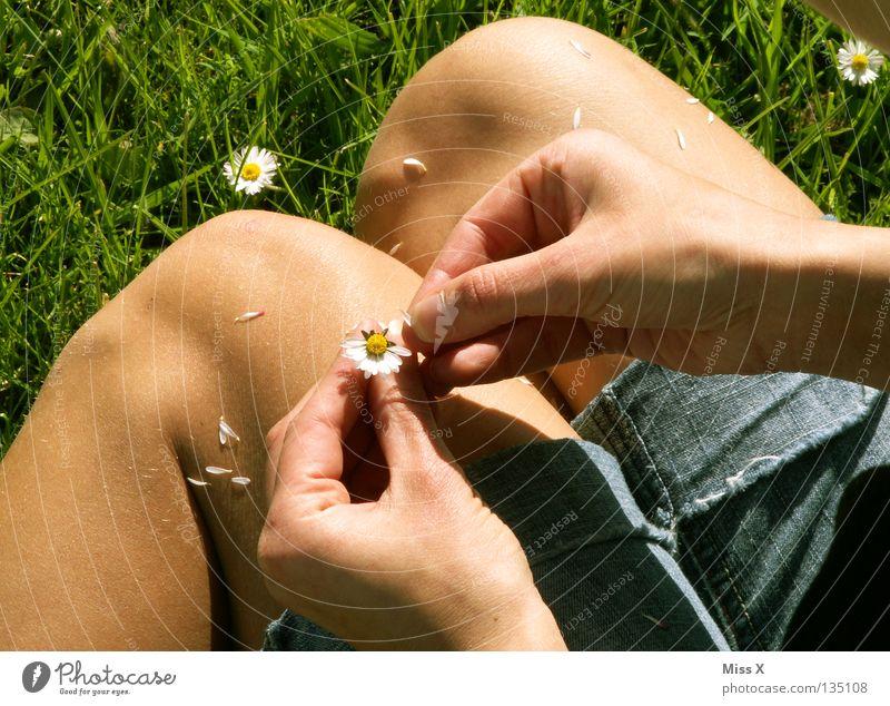 Woman Green Hand Flower Adults Meadow Grass Blossom Sadness Think Legs Dream Wait Fingers Longing Infatuation