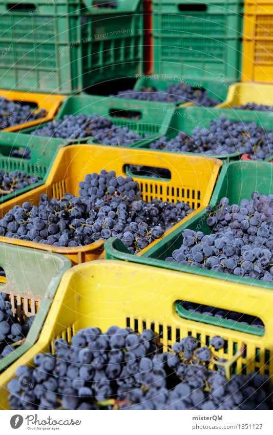 Sangiovese II Art Work of art Esthetic Vine Wine growing Bunch of grapes Grape harvest Winery Harvest Crate Box up Many Blue Stack Colour photo Multicoloured