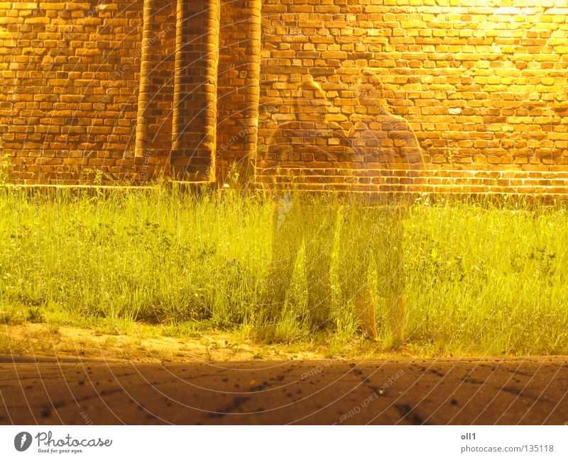 Imaginary present Penitentiary Wall (barrier) Night Yellow Long exposure Ghosts & Spectres  Hologram Transparent Meadow Grass Stone floor Brick Woman Man