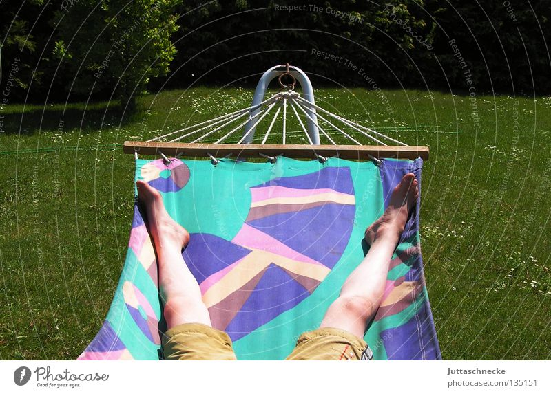 relaxation Hammock Relaxation Goof off Sunbathing Brown Green Multicoloured Cozy Comfortable Grass Meadow Quality of life Summer Contentment Legs Feet Garden