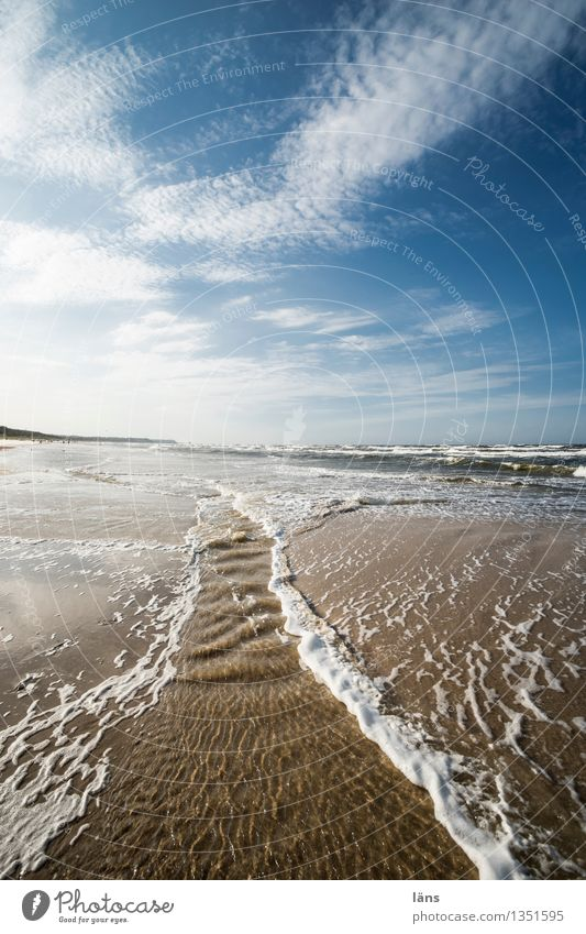borderlands Beach vacation Summer Maritime Ocean Baltic Sea Usedom
