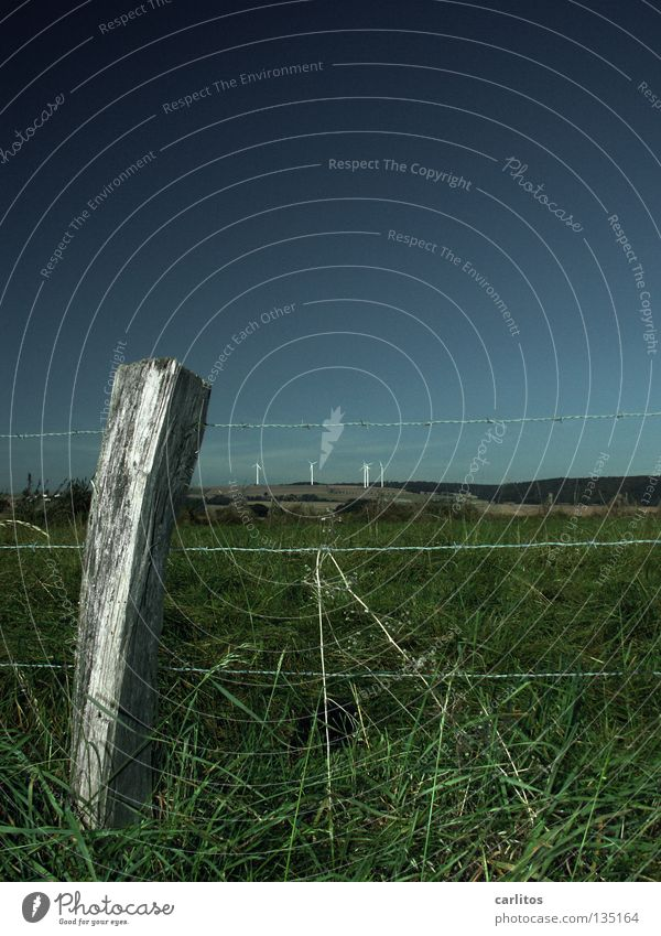 Summer Meadow Air Wind Border Pasture Fence Ecological Barbed wire Renewable energy Fence post Renewable raw materials