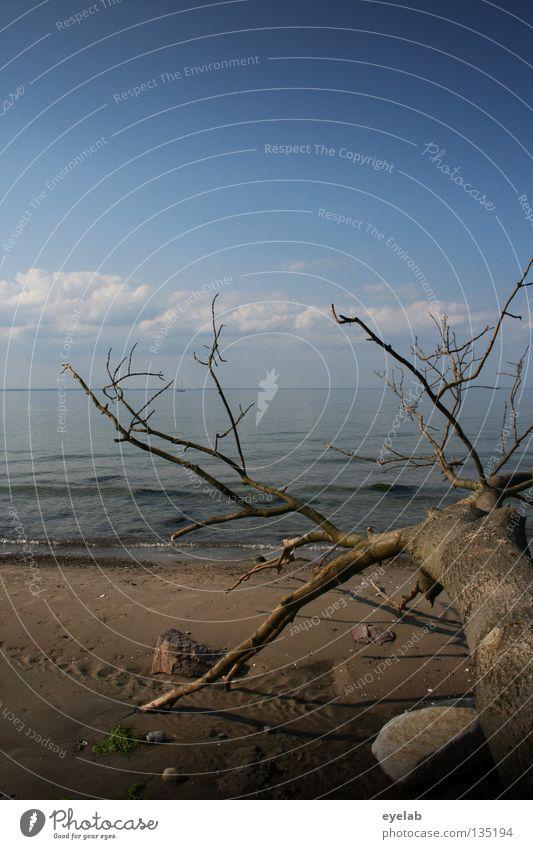 Sky Blue Water Tree Summer Ocean Beach Clouds Death Coast Sand Stone Lake Horizon Earth Waves