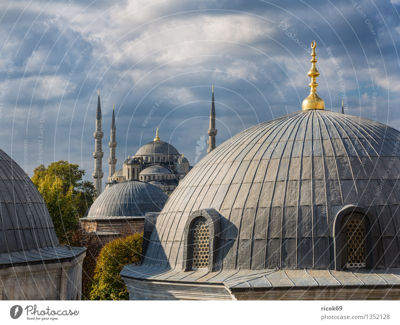 mosque Vacation & Travel Tree Town Tower Manmade structures Building Architecture Tourist Attraction Landmark Idyll Religion and faith Tourism Istanbul Turkey