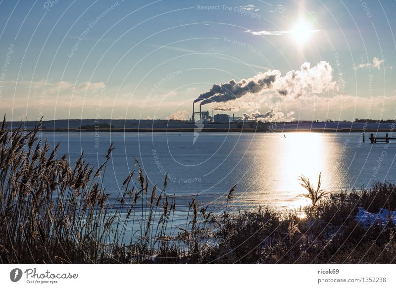 industrial zone Sun Energy industry Coal power station Environment Nature Landscape Water Clouds Coast Baltic Sea Chimney Smoke Climate Industry