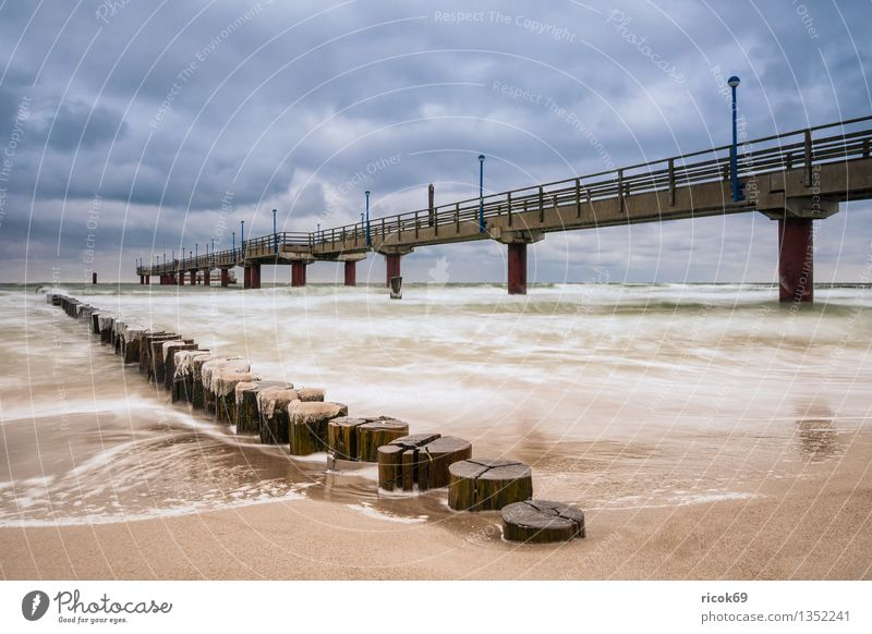 Zingst Vacation & Travel Beach Winter Nature Landscape Water Clouds Coast Baltic Sea Ocean Architecture Tourist Attraction Cold Blue Idyll Calm Tourism