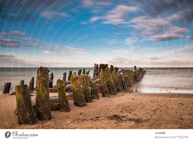 Baltic coast Relaxation Vacation & Travel Beach Ocean Nature Landscape Water Clouds Coast Baltic Sea Stone Old Blue Romance Idyll Calm Tourism Break water Sky