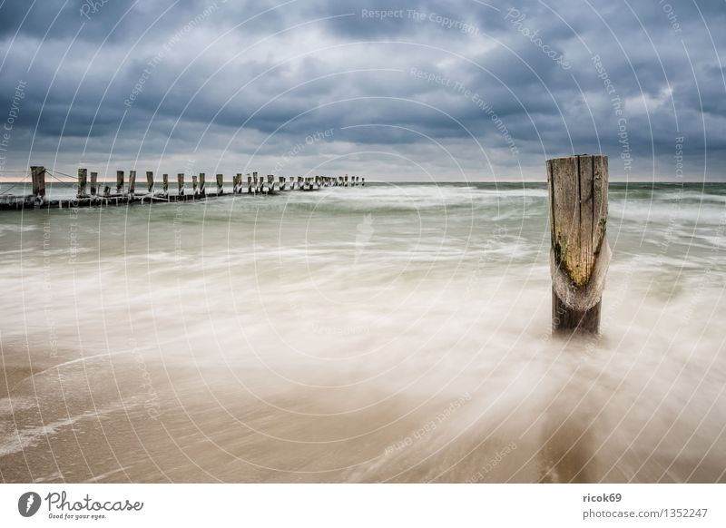 groyne Vacation & Travel Beach Winter Nature Landscape Water Clouds Coast Baltic Sea Ocean Cold Blue Idyll Calm Tourism Break water Ice Zingst Fischland Darss