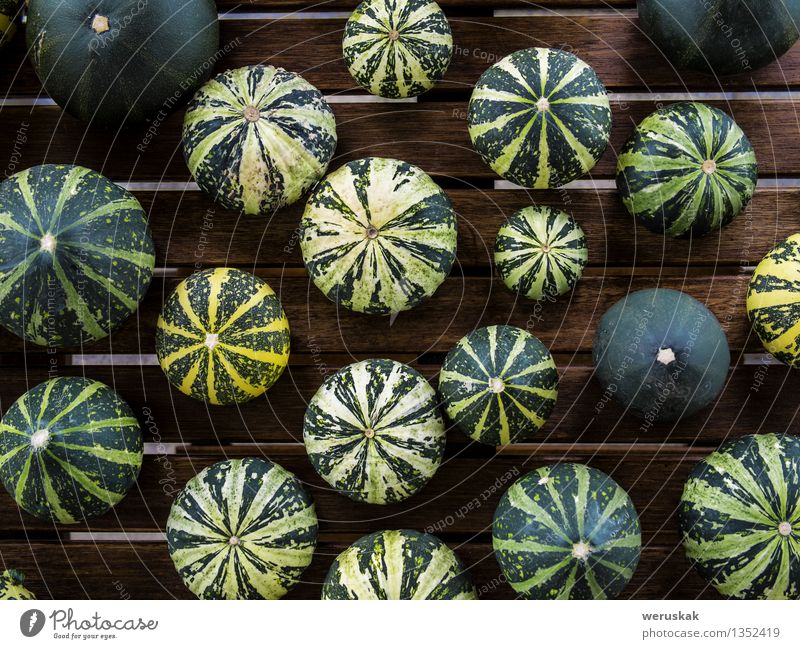 Cucurbita pepo still life green pumkins top view Green Yellow Autumn Natural Food photograph Small Exceptional Fresh Decoration Table Cooking & Baking