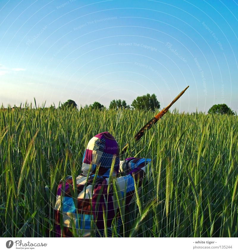 On the lookout Grain Hunting Human being Sky Clouds Tree Observe Blue Green Violet White Tepid Striped Cyan Vest Hooded (clothing) Hunter Weapon Archer