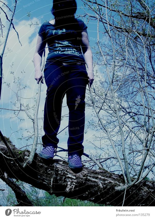 Clouds Dark Jump Spring Fear Tall To fall Branch To hold on Tree trunk Panic Pallid Muddled Hardcore Tears Lovesickness