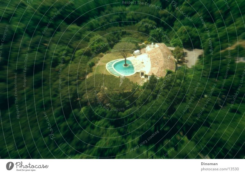 Villa with tree in pool Swimming pool Tree Forest France