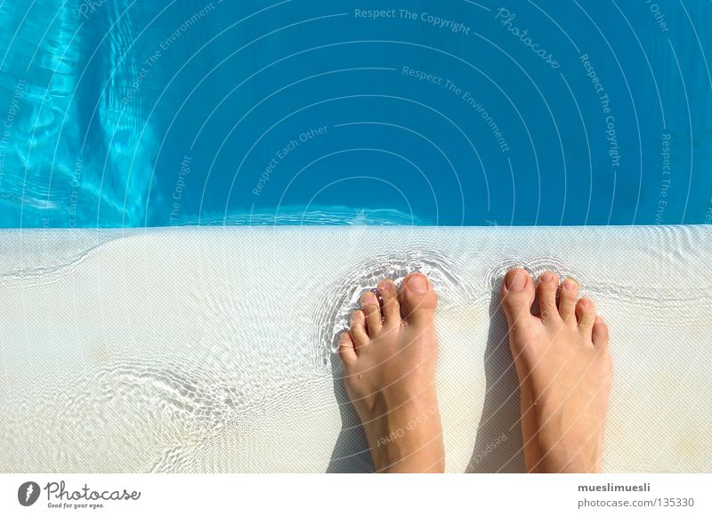Clear view Swimming pool Madeira Portugal Vacation & Travel Summer Water Concentrate Feet Free Paradise Bubble