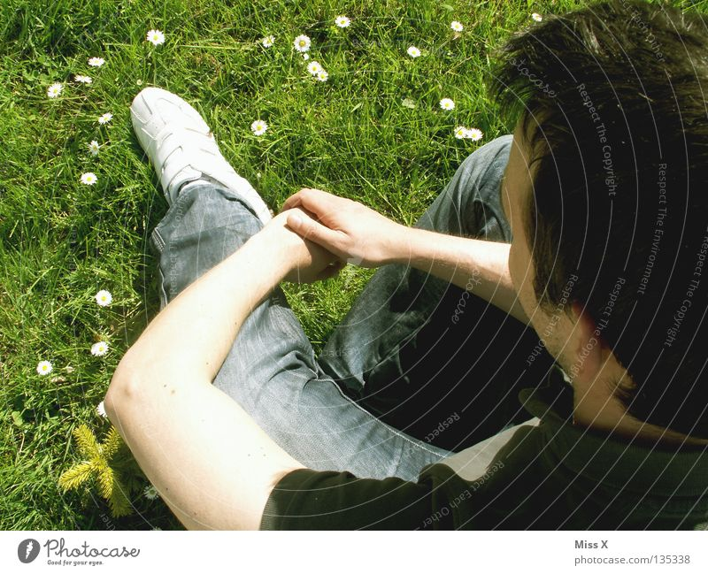 Happy 30th anniversary. Colour photo Exterior shot Man Adults Arm Legs Spring Flower Grass Meadow Think Dream Wait Green Lovesickness Longing Flower meadow Miss