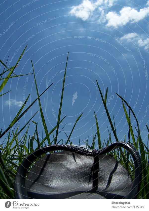 Green Blue Summer Vacation & Travel Calm Meadow Grass Footwear Going Walking Break Stand Lie Flip-flops Skyward