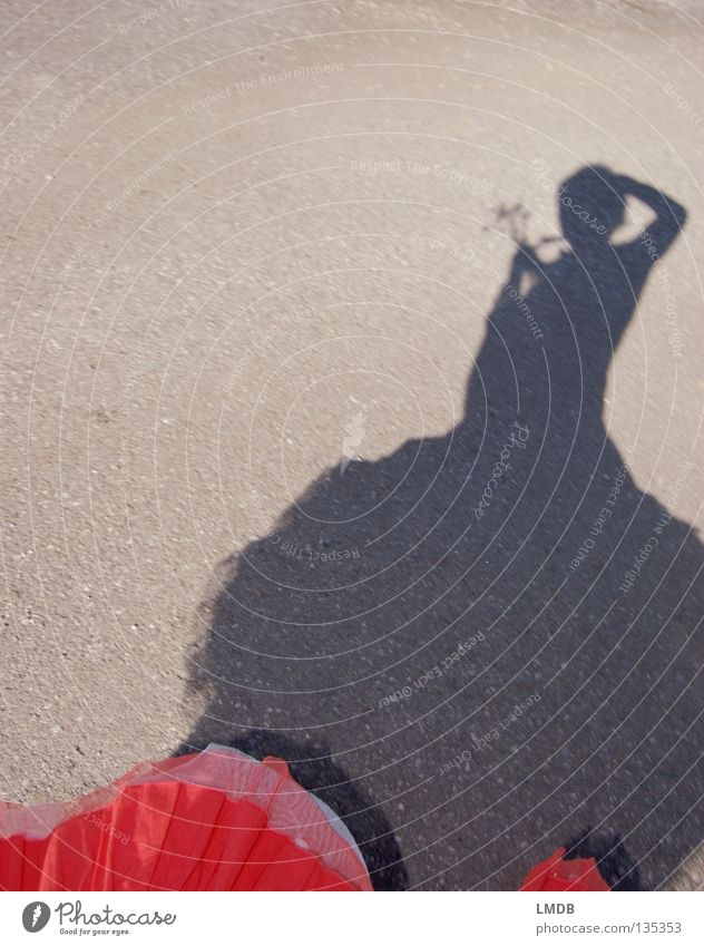 Shadow girl 3 Light Dark Border Take a photo Flower Easy Flexible Airy Leisure and hobbies Rotate Rotation Noble Spirited Woman Bright Planning Contrast Bouquet