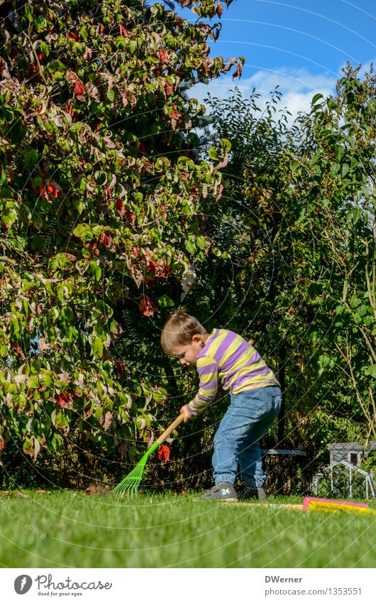 Human being Child Sky Plant Green Tree Leaf Joy Meadow Grass Movement Natural Boy (child) Garden Bright Work and employment