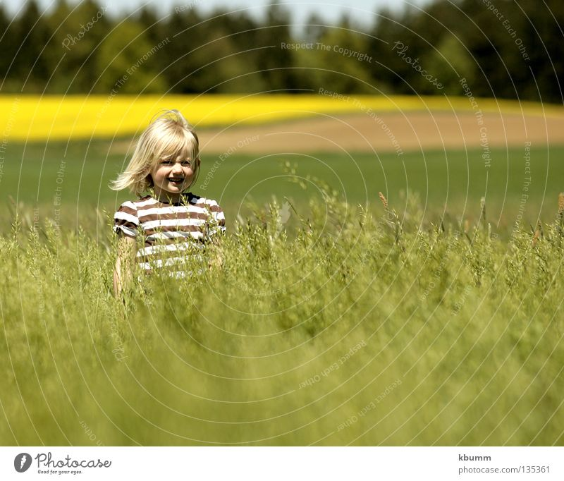 Nature Green Girl Spring Wind Child Hide Canola Oats