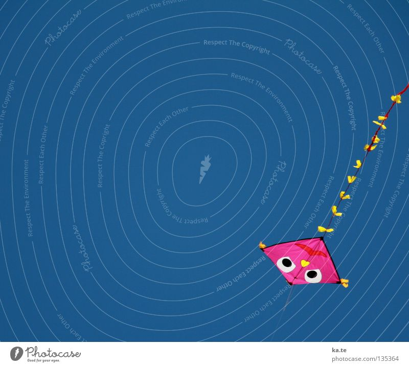 On the leash Dragon Pink Bow Multicoloured Happiness Bound Hold Judder Air Crash Downward Above Children's game Leisure and hobbies Beach Ocean Handicraft