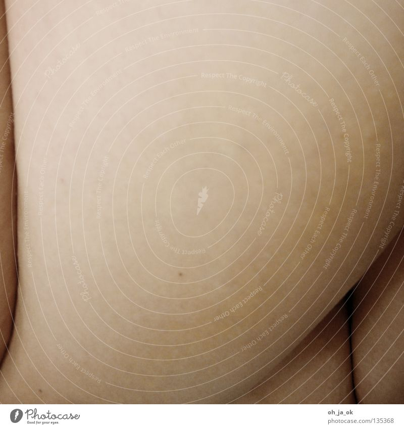 Close to the skin Pore Vulnerable Naked Near White Black Soft Round Narrow Thigh Sensitive Greaseproof paper Pebble Feeble Skin Body Legs Arm Detail Smoothness