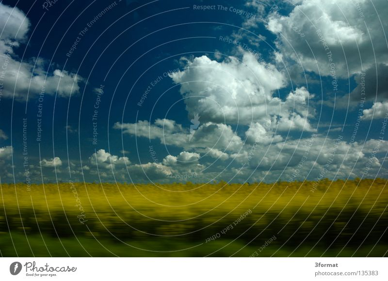 Sky Green Tree Vacation & Travel Summer Joy Clouds Yellow Landscape Street Freedom Movement Grass Spring Horizon Power
