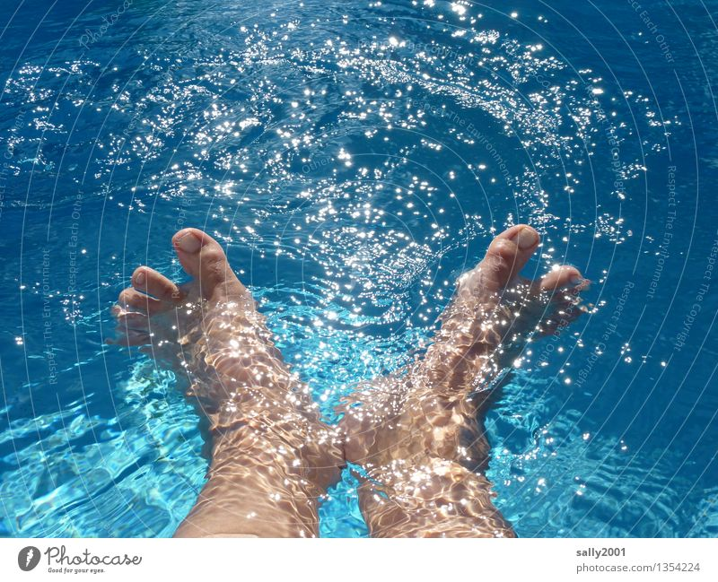 aquagym Vacation & Travel Summer Summer vacation Sun Sunbathing Swimming & Bathing Feet 1 Human being Movement Relaxation To enjoy Playing Happy Wet Blue Joy