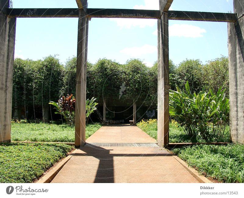 Green Plant Architecture Concrete Academic studies Worm Brazil Brasília
