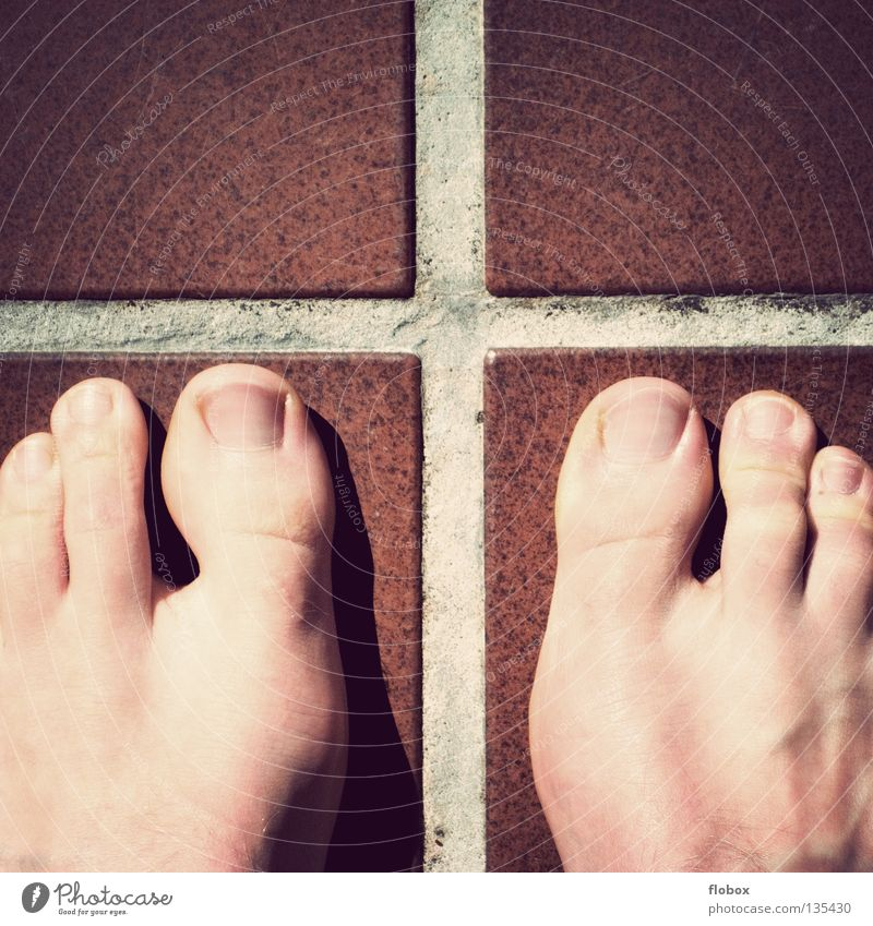 Human being Man Beautiful Joy Feet Skin Masculine 3 Change Long Obscure Row Disgust Toes Flow Nail