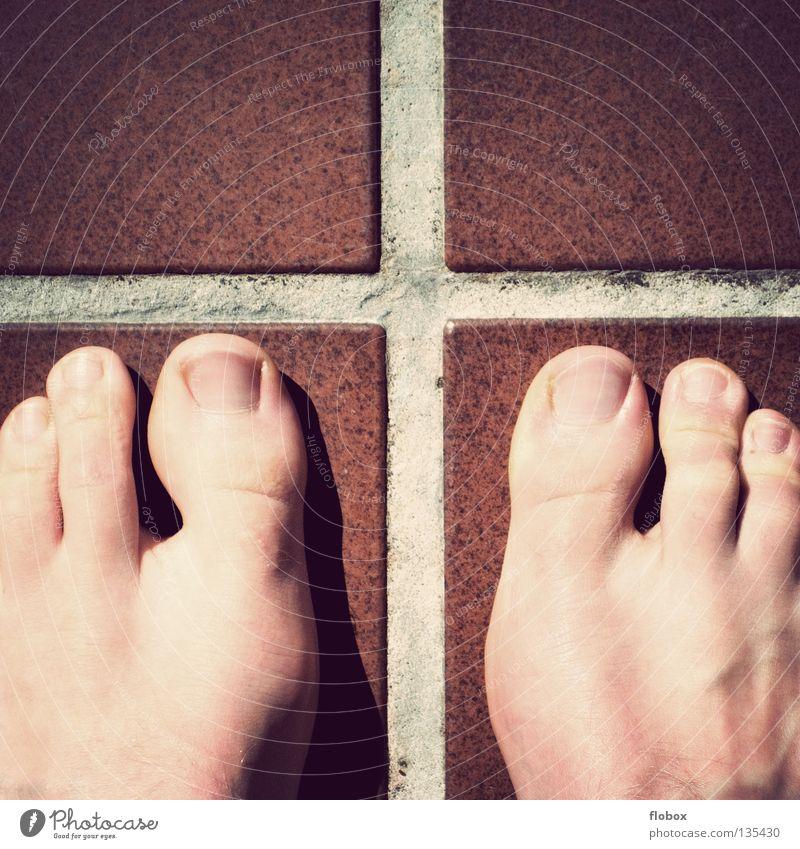 Mutation! Toes Genetics Genetic engineering DNA Flow Pattern 3 Vessel Masculine Seam Long Hideous Beautiful Disgust Toenail Nail Man Obscure Joy mutation Feet