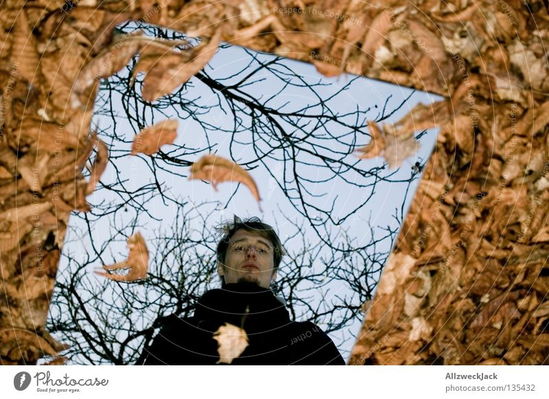 Man Leaf Autumn Wall (building) Gray Brown Crazy Image Transience Mirror Painting and drawing (object) Retirement Parking Self portrait Mystic Mirror image