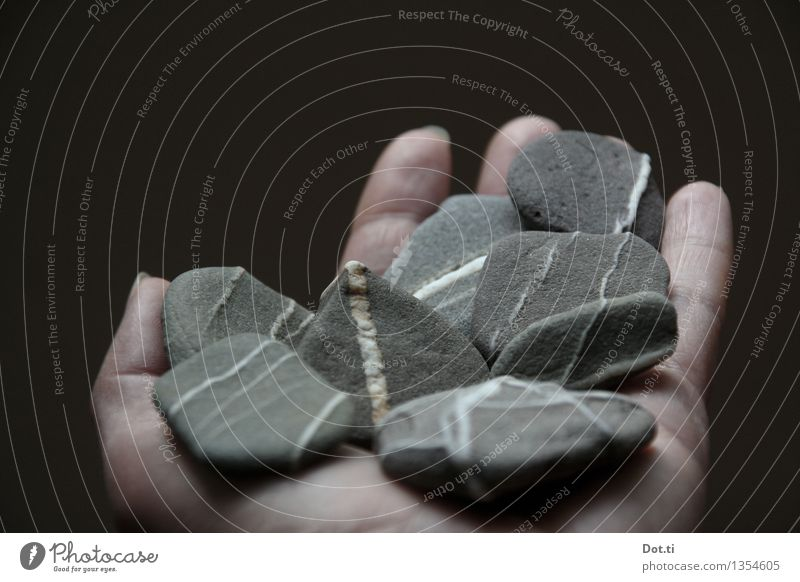 White Hand Gray Stone Multiple Fingers Stripe To hold on Indicate Collection Pebble Discovery
