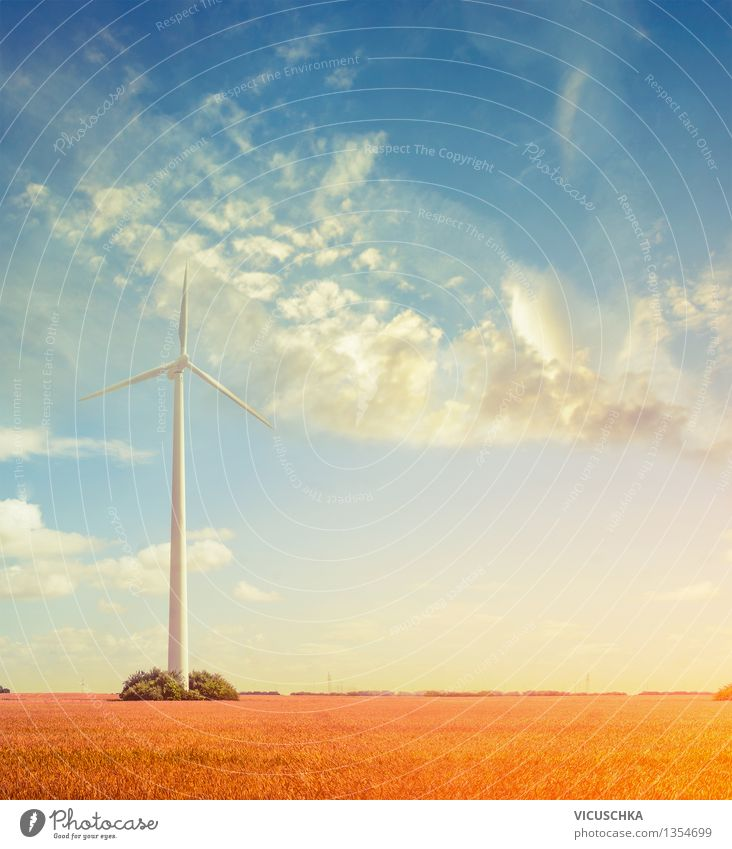 Wind turbine in the field Summer Event Advancement Future High-tech Energy industry Renewable energy Wind energy plant Nature Sky Sunrise Sunset Autumn