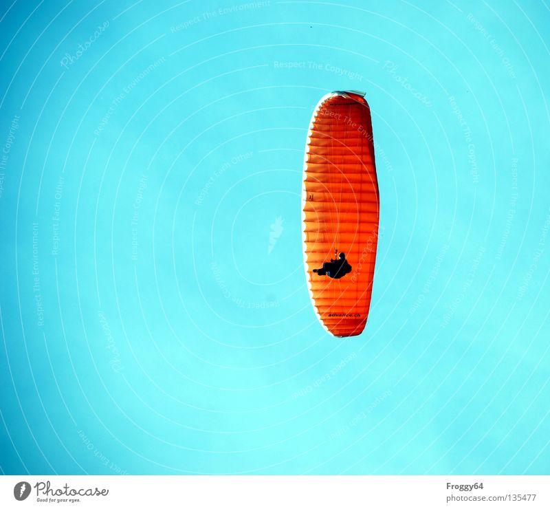 Sky Sun Blue Black Clouds Mountain Air Orange Bird Wind Weather Aviation Parachute Pilot Paraglider Schauinsland