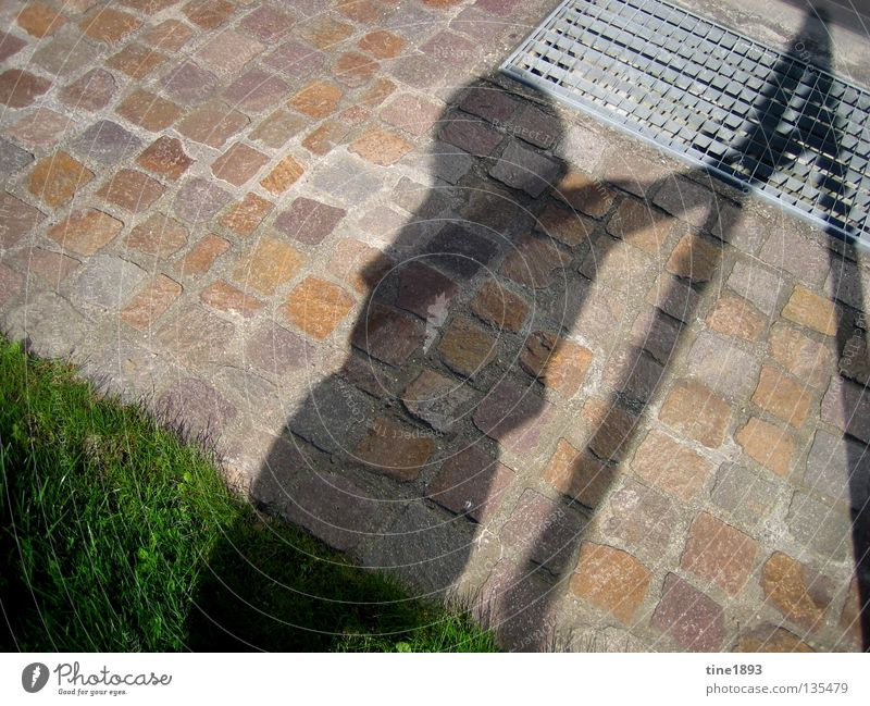 shadow play Green Grass Juicy Physics Summer Exterior shot Shadow Considerable Human being Garden Sun Bright Warmth Beautiful weather Joy Freedom Happy