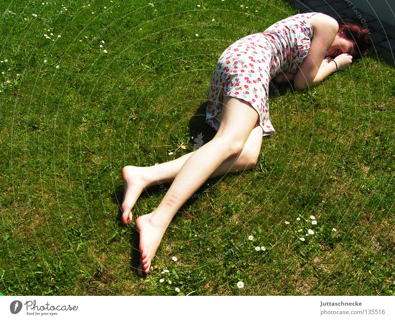 rum balls Woman Grass Meadow Summer Summer dress Flower Fatigue Relaxation To enjoy Harmonious Pleasant Peace Lie lie around roll around Lawn. garden