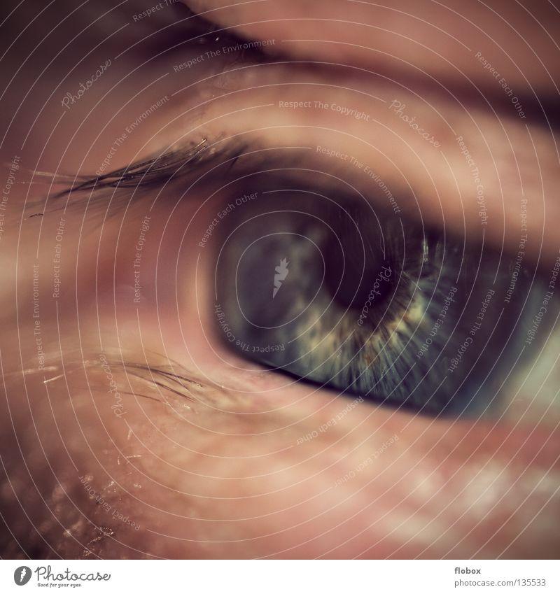 Human being Man Senior citizen Eyes Sadness Fear Skin Masculine Grief Fatigue Wrinkles Distress Panic Senses Eyelash Lens
