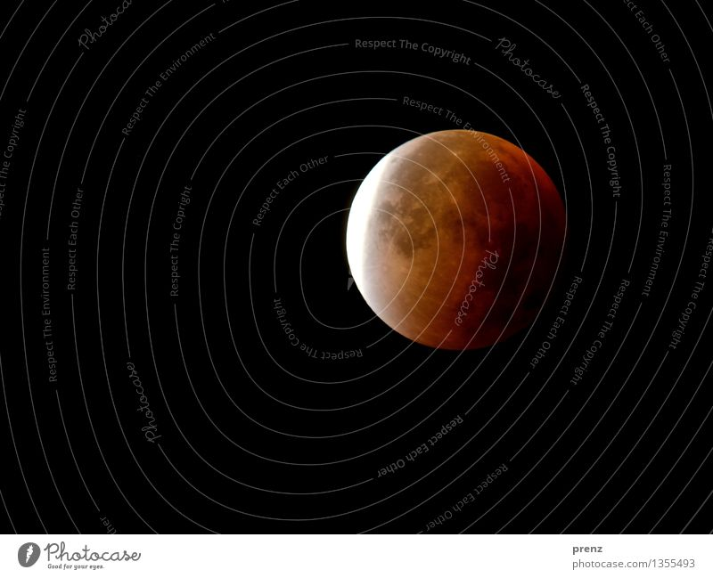mofi Environment Nature Sky Night sky Moon Lunar eclipse Full  moon Autumn Weather Beautiful weather Red 2015 Colour photo Exterior shot Experimental Deserted