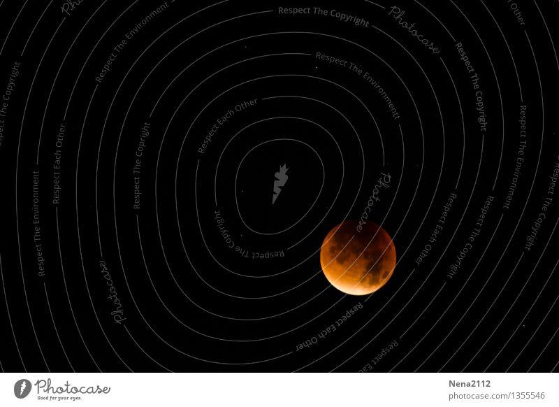 MoFi 4 - Total Environment Nature Elements Sky Heaven Night sky Moon Lunar eclipse Full  moon Esthetic Exceptional Threat Dark Fantastic Far-off places Gigantic
