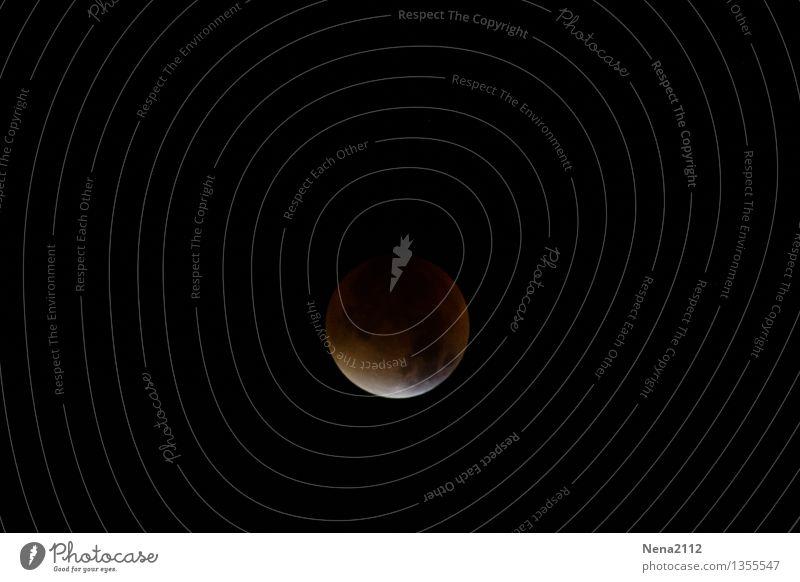 Sky Nature Heaven Far-off places Dark Environment Exceptional Esthetic Fantastic Threat Elements Round Curiosity Universe Moon Enchanting