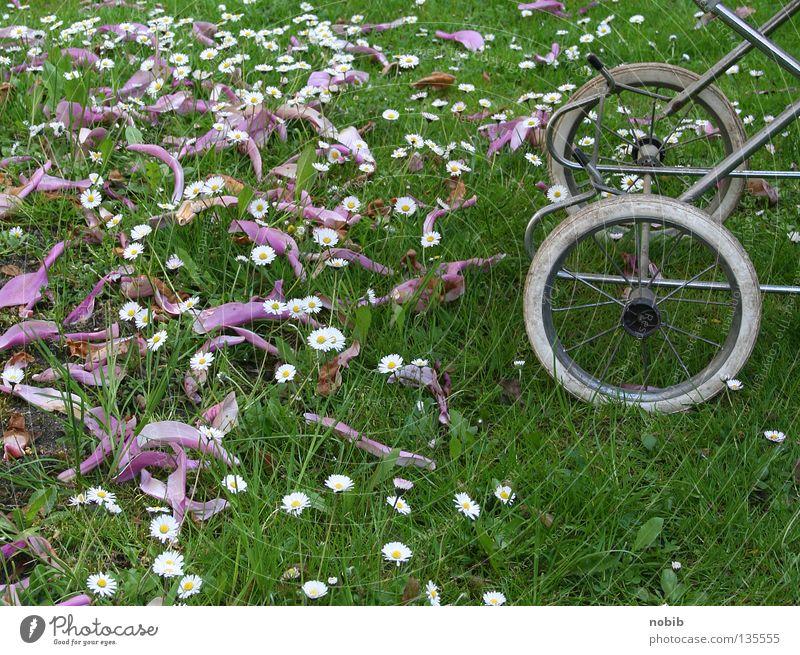 kiwa in green Baby carriage Meadow Daisy Spring Siesta Air Calm doll car pram wheel Infancy