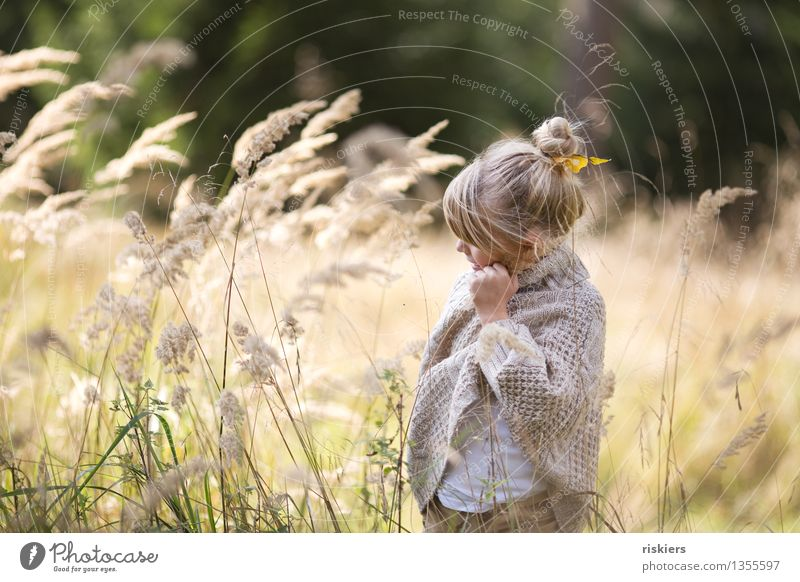 Human being Child Nature Plant Relaxation Joy Girl Forest Environment Autumn Grass Natural Feminine Happy Dream Contentment