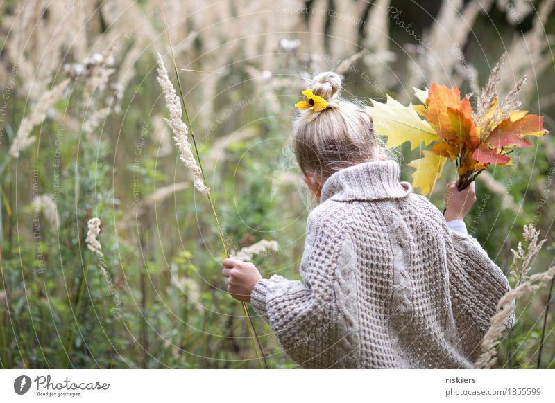 Collect autumn treasures Human being Feminine Child Girl Infancy 1 3 - 8 years Environment Nature Plant Autumn Grass Leaf Forest Discover To hold on Looking
