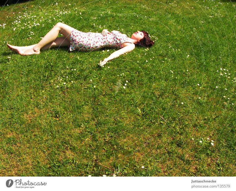 No ant Woman Grass Meadow Summer Summer dress Flower Fatigue Relaxation To enjoy Harmonious Pleasant Peace Lie lie around roll around Lawn. garden Comfortable